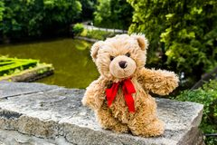 Séjour de Dranik d'ours de nounours sur le vieux mur Photo libre de droits