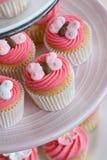 Sélection de gâteau Images stock