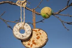 Sélection de nourriture pour oiseaux images stock