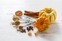 Sélection des épices pour Noël et le thanksgiving Photo libre de droits