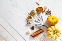 Sélection des épices pour Noël et le thanksgiving Photographie stock libre de droits