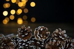 Sélection des cônes de pin sur une table en bois avec des lumières de bokeh dans le dos image stock
