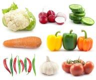 Sélection des légumes Photos libres de droits
