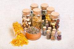 Sélection naturopathic de fines herbes de médecine également utilisée dans le witche païen Images libres de droits
