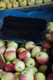 Sélection organique des pommes Photos stock