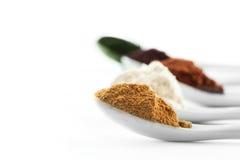Sélection superbe de nourriture biologique de nourriture dans la cuillère photo stock