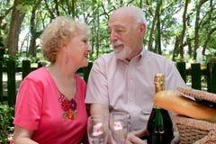 Séniores do piquenique - no amor Fotografia de Stock Royalty Free