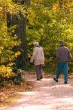 Séniores que apreciam uma caminhada Fotografia de Stock