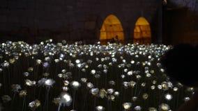 Séoul, Corée ; En juillet 2016 - le point de repère rose de fleur de LED à DDP font dedans Photographie stock