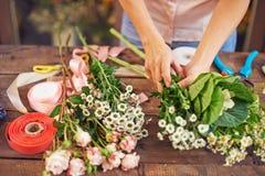 Séparation des fleurs Images libres de droits