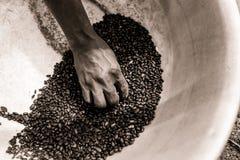 Sépia étroite de la main africaine maigre de femme tenant des haricots noirs dans le pot tout en travaillant dans la ferme dans l photographie stock libre de droits