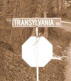 Sépia de route de la Transylvanie Photo libre de droits