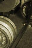 Sépia poids de 25 livres Image stock