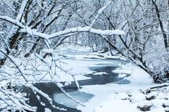 Sérénité d'hivers Photographie stock libre de droits