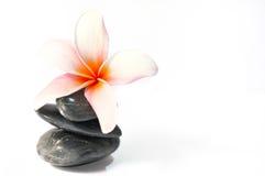Série 4 de zen Photo libre de droits