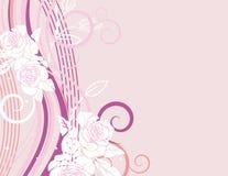 Série cor-de-rosa requintado Fotografia de Stock