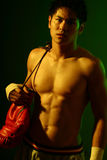 Série de boxeur Photo libre de droits