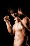 Série de boxeur images libres de droits