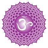 Série de Chakra: Sahasrara ilustração stock