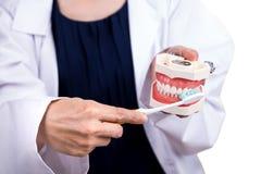 Série de dentista que mostra o método correto de escovar os dentes imagem de stock