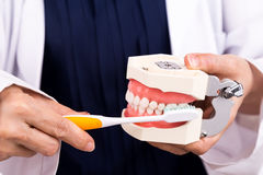 Série de dentista que mostra o método correto de escovar os dentes imagem de stock royalty free