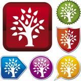 Série de graphisme : arbre (vecteur) Images libres de droits