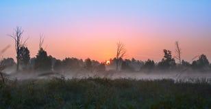 Série de matin brumeux d'automne de paysages Photographie stock libre de droits