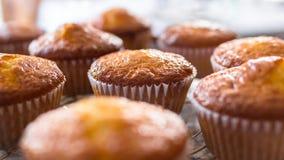 Série de petits gâteaux ou de petits pains fraîchement cuits au four faits maison Images libres de droits