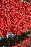 Série de poivron rouge Photographie stock libre de droits