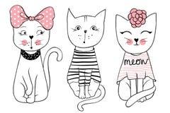 Série de vecteur avec les chats mignons de mode Ensemble élégant de chaton illustration libre de droits