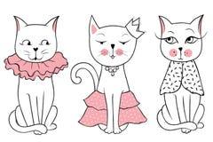 Série de vecteur avec les chats mignons de mode Ensemble élégant de chaton illustration de vecteur