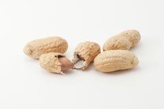 Série do amendoim - 3 Imagens de Stock