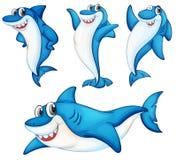 Série do tubarão ilustração stock