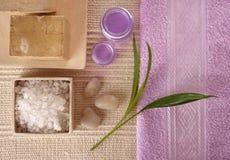 Série dos cosméticos dos TERMAS Fotografia de Stock