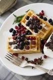 Série 48 dos waffles belgas imagens de stock