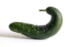 Série drôle de légumes - concombre Photographie stock libre de droits