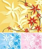 Série floral do fundo Fotos de Stock