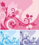 Série floral do fundo Imagens de Stock Royalty Free