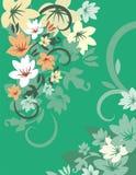 Série floral do fundo Imagem de Stock Royalty Free