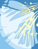 Série floral do fundo ilustração do vetor