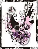 Série floral do fundo Fotos de Stock Royalty Free