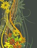 Série floral requintado Foto de Stock