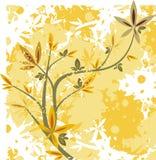 Série florale de branchement Photographie stock libre de droits