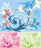 Série florale de fond Image libre de droits