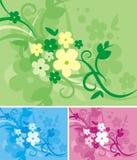 Série florale de fond Photographie stock