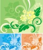 Série florale de fond Images stock