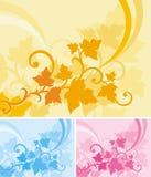 Série florale de fond Images libres de droits