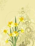 Série florale de fond illustration stock
