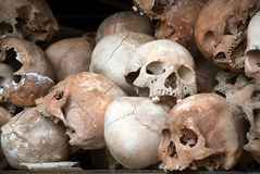 Série humaine 01 de crâne image libre de droits