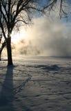 Série rêveuse 9 de l'hiver photographie stock